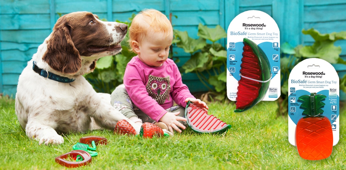 antimicrobial pet products